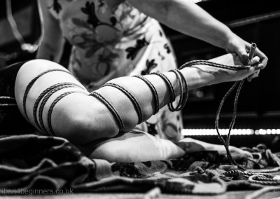 shibari4beginners.co.uk